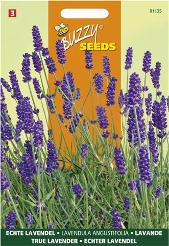 Buzzy ® Lavendel