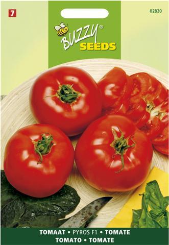 Buzzy ® Tomaten Pyros F1