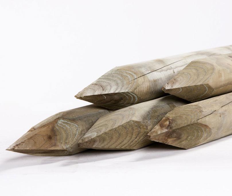 Boompaal naaldhout gepunt