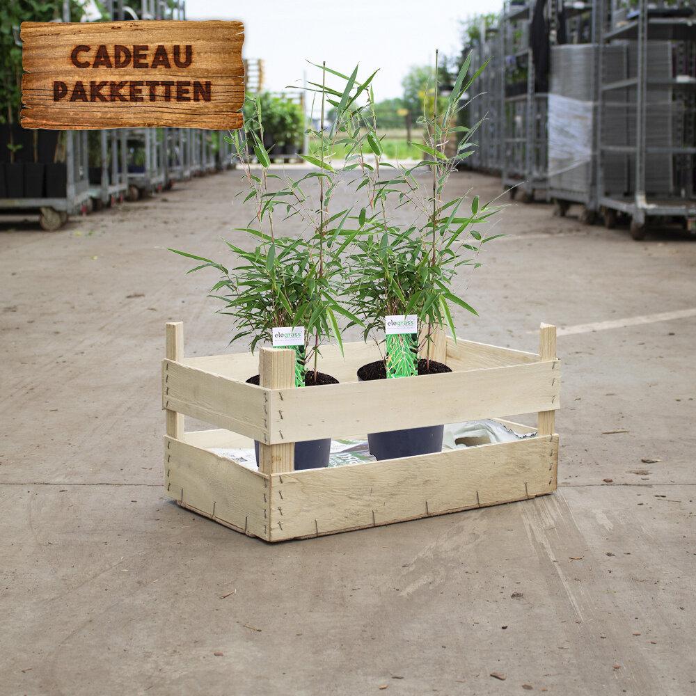 Bamboe cadeaupakket