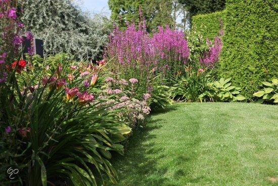 Ecostyle Tuinmest voor gazon en (moes)tuin