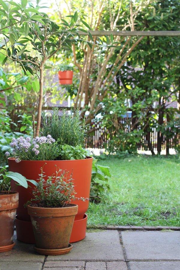 Elho greenville rond terracotta tuin