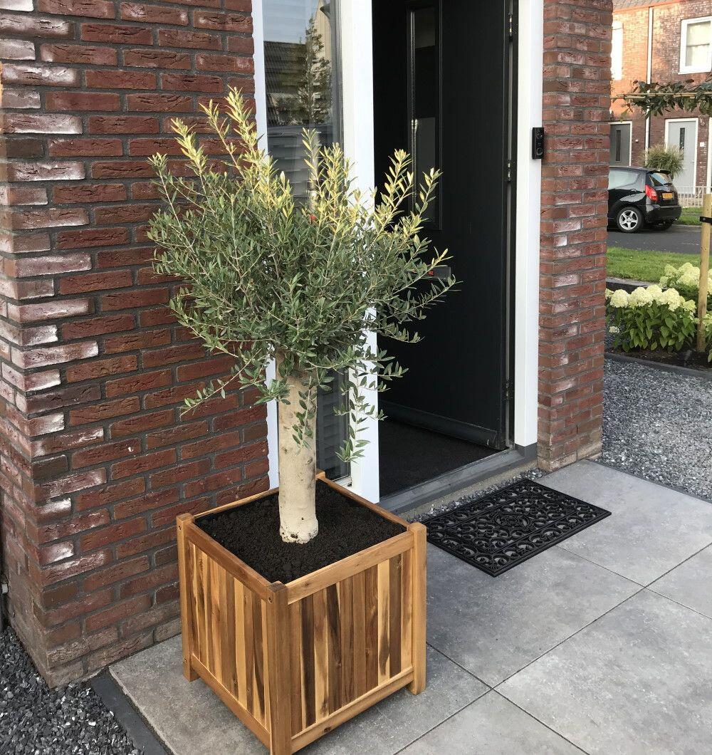 Planter hardhout vierkant voor de deur