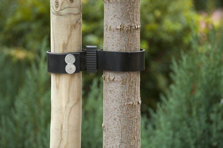 Gebruik Nature boomband met spijkers