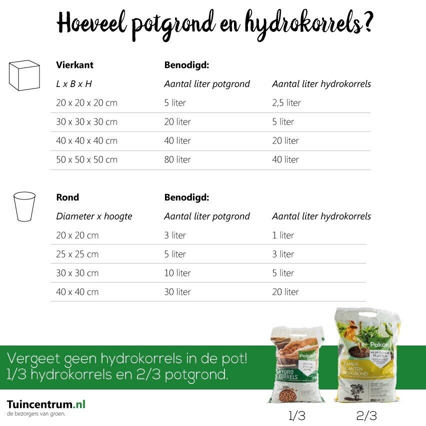 Hoeveel potgrond en hydrokorrels?
