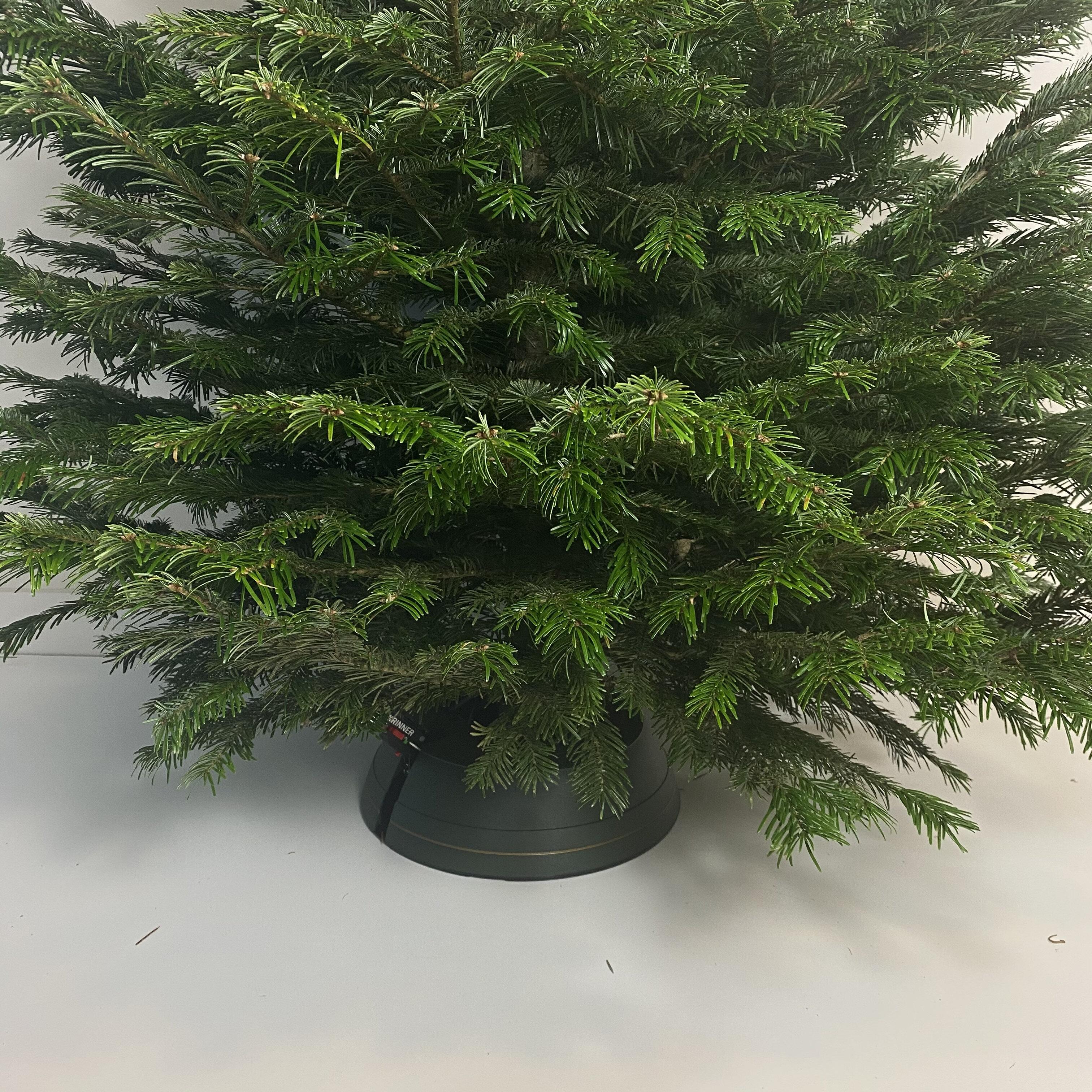 Kerstboomstandaard Krinner