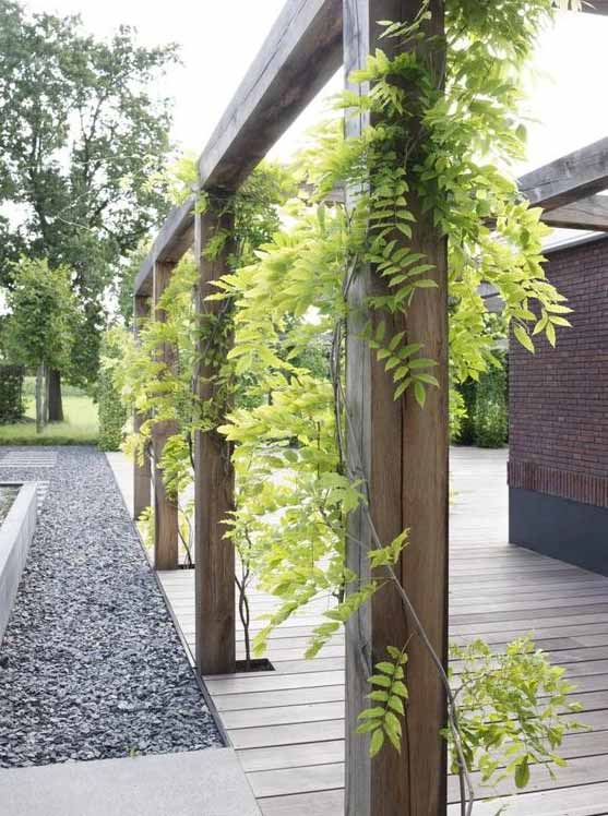 Ecostyle Klimplanten-AZ