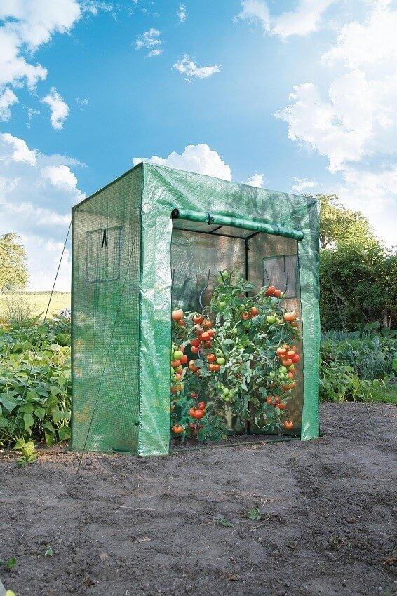 Nature tomatenkas groen