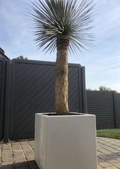 Planter Smooth wit vierkant buiten
