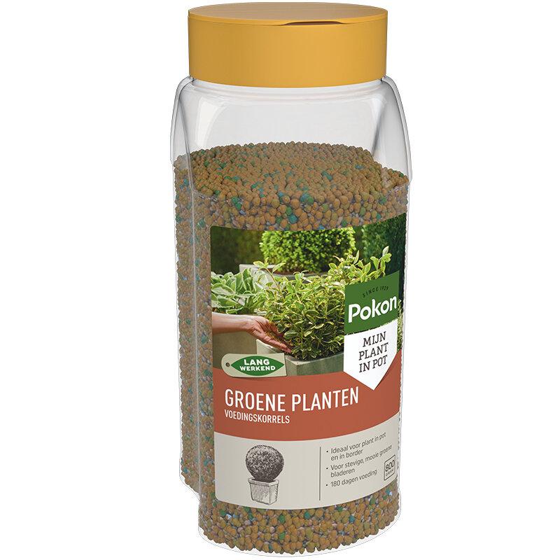 Pokon Groene Planten Langwerkende voedingskorrels 800 gram