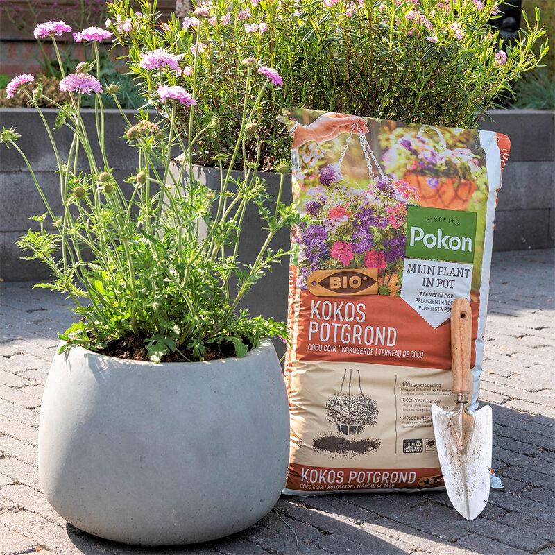 Pokon Bio Kokos Potgrond 20 liter