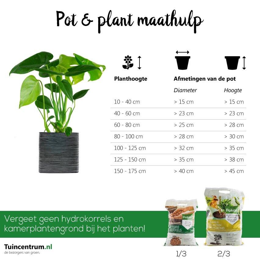 Pot en plant maathulp