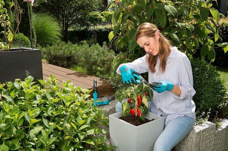 Snoeien met Gardena plant- en bodemhandschoenen